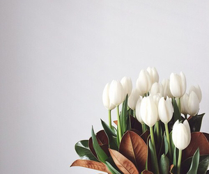 flowers, girly, and tulips image
