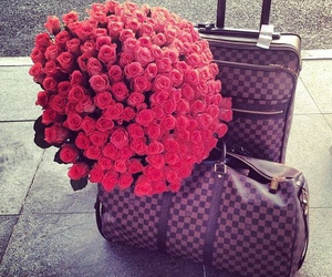 rose, flowers, and Louis Vuitton image