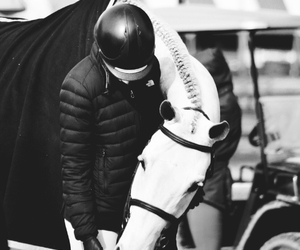 equestrian, horse, and love image
