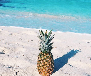 beach, pineapple, and summer image