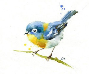 watercolor and bird image