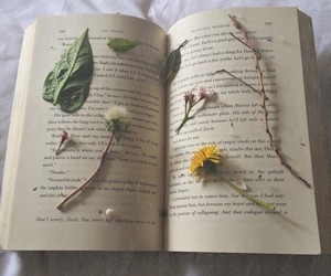 book, flowers, and leaves image