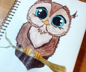 owl, drawing, and animal image