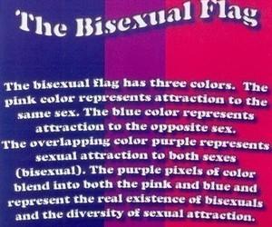bisexual flag image