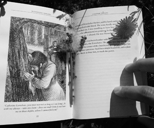 black and white, book, and catherine image