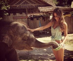 girl, elephant, and summer image