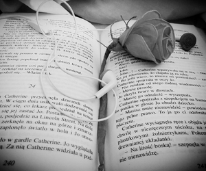 black&white, book, and flowers image