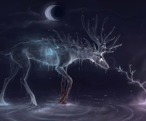 night, deer, and magic image