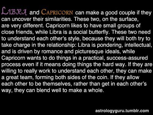 capricorns and capricorns friendship compatibility