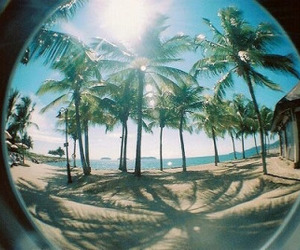 beach, summer, and sun image