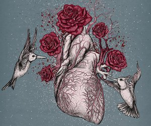 heart, rose, and love image