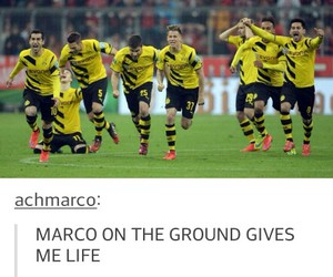 babes, marco reus, and bvb team image