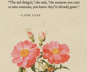 flower, Lang Leav, and quotes image