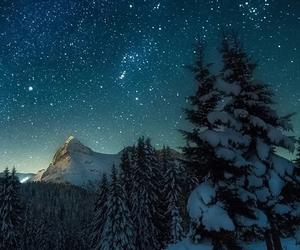 stars, snow, and tree image
