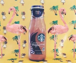 drinks, starbucks, and flamingo image