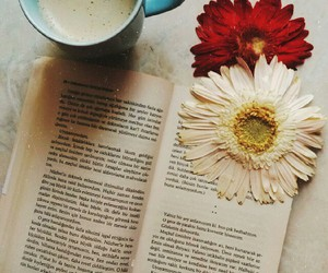 amazing, book, and coffee image