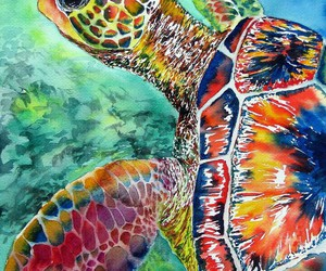 turtle and watercolor image