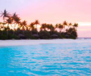 beach, amazing, and header image