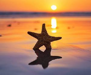 stars, sea, and summer image