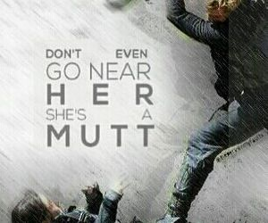 mutt, katniss, and hunger games image