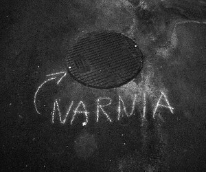 narnia and black and white image