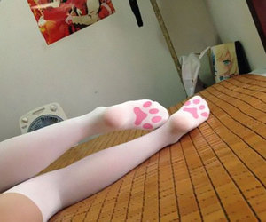 cat, pink, and socks image