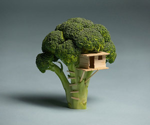 broccoli, house, and tree image