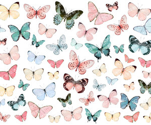 butterflies, illustrations, and images image