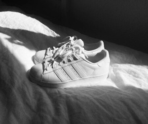 white, superstar, and adidas image