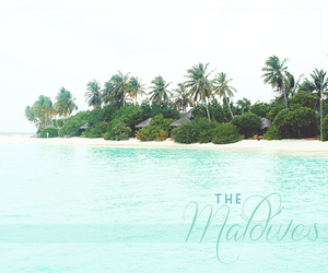beach, Maldives, and summer image