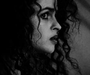 harry potter and bellatrix lestrange image
