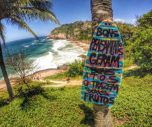 beach, paradise, and tag image