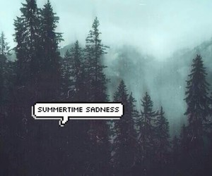 lana del rey, summertime sadness, and grunge image