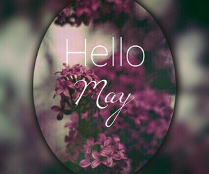 may, hello, and hello may image