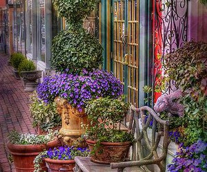 charming, france, and shop front image