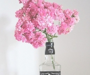 flowers, jack daniels, and pink image