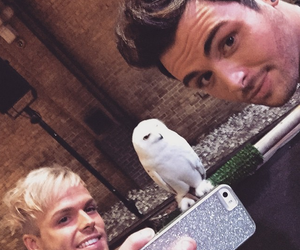 owl, jolly, and union j image