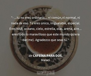 cafe, frases, and libro image