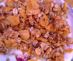 fit and granola image