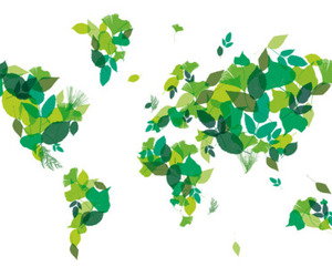 leaves and world image