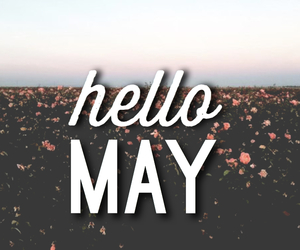 flowers, hello, and may image