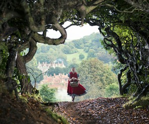 little red and into the woods image