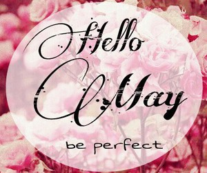 flowers, may, and hello image