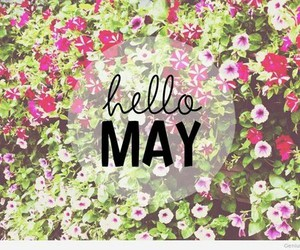 may, spring, and flowers image