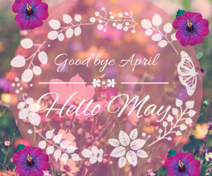 flowers, may, and hello may image