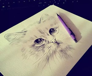 art, cat, and ideas image