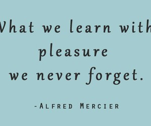 pleasure, learn, and quote image