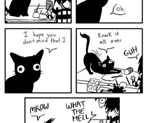 cat, comic, and funny image