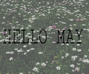 flowers, grunge, and hello image