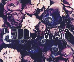 may, flowers, and hello may image